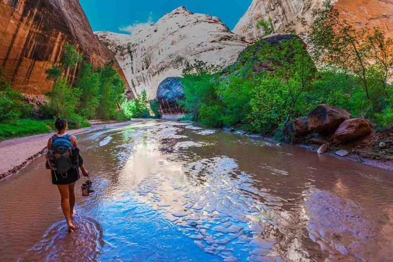 A person walks bearfoot along a river surrounded by a canyon.