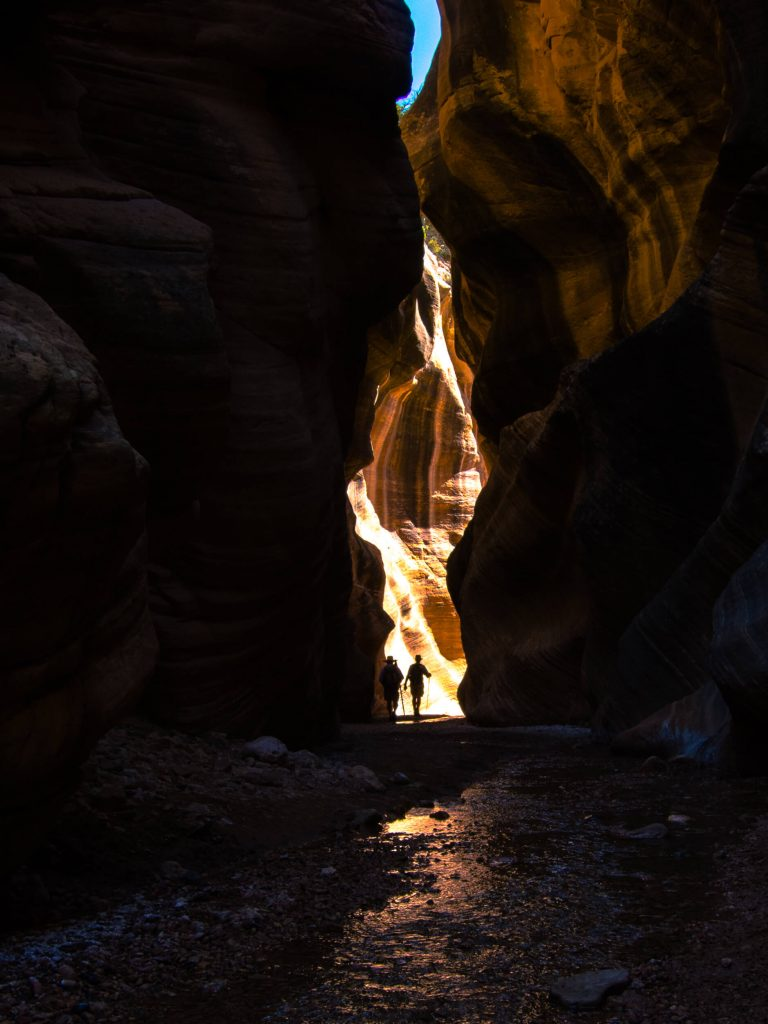 Willis Canyon at Escalante National Monument.