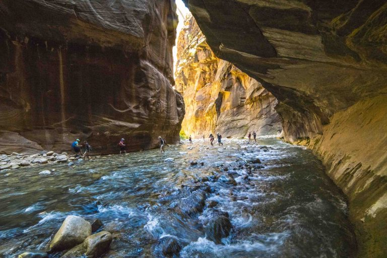 A group of tourists trek through a river amidst a narrow canyon.