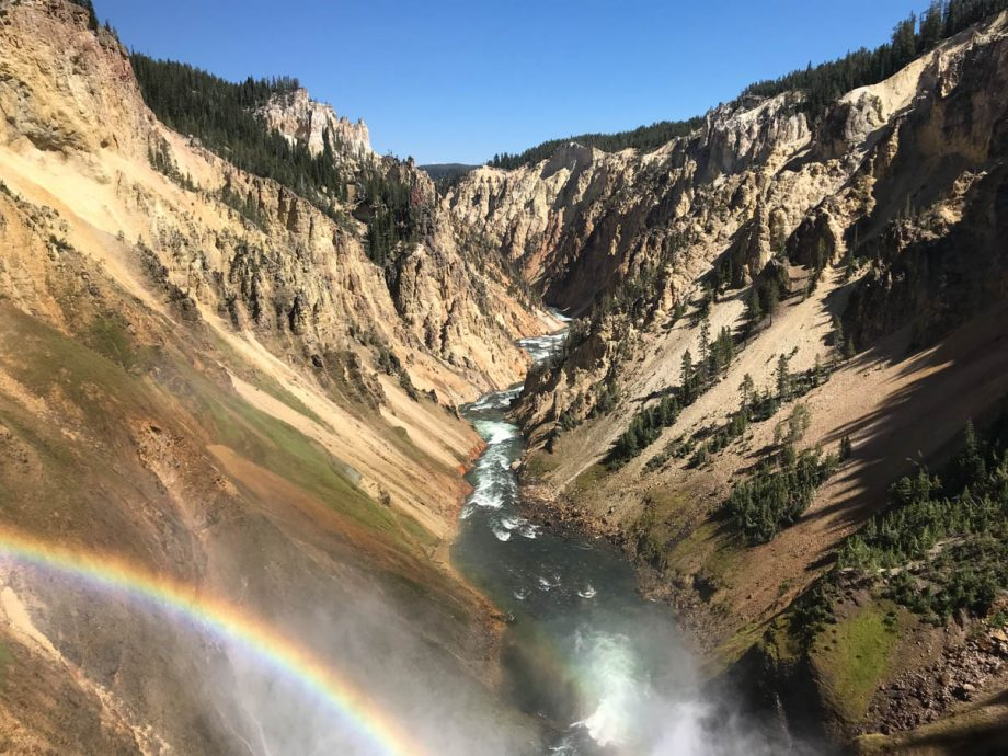 rainbow on grand canyon of yellowstone national park