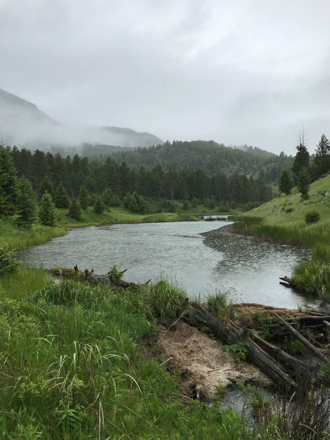 hellroaring creek in yellowstone national park landscape