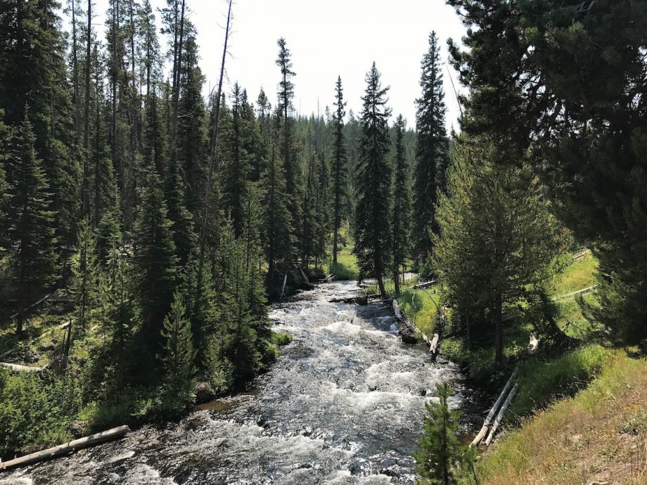 hellroaring creek in yellowstone national park