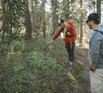 Learn about Yosemite National Park on an REI guided hike