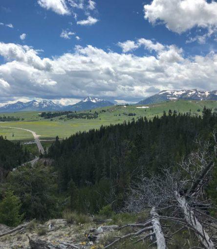 bunsen peak view yellowstone national park