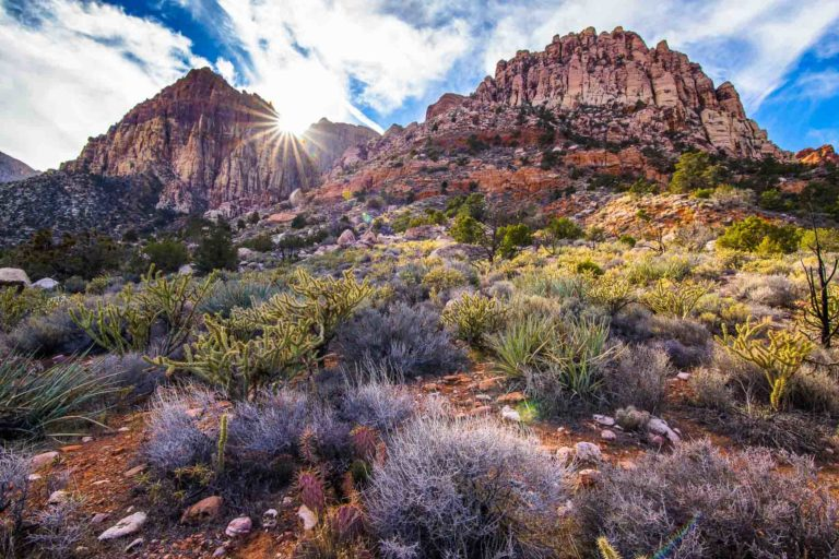 Sandstone cliffs in Red Rock Canyon
