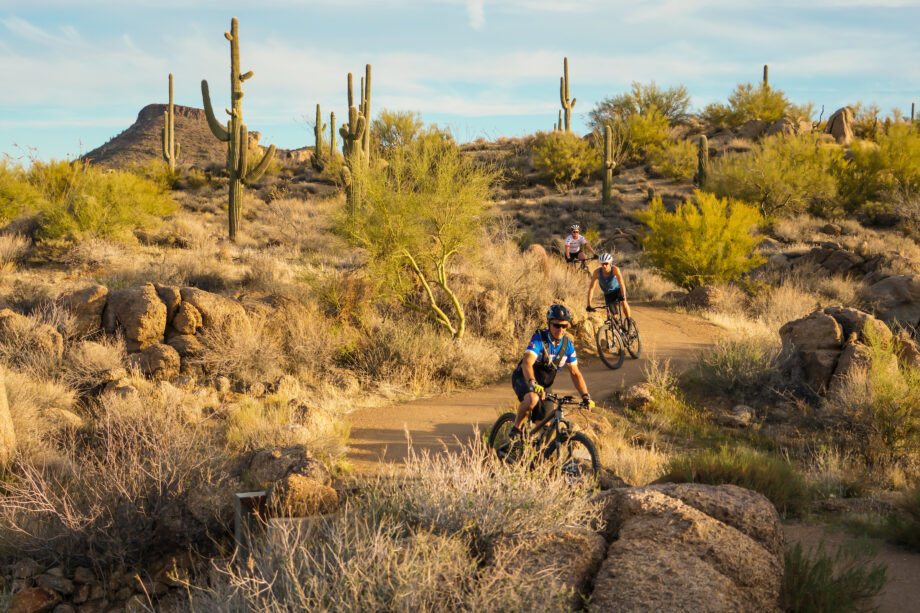 two people riding mountain bikes in mcdowell sonoran preserve