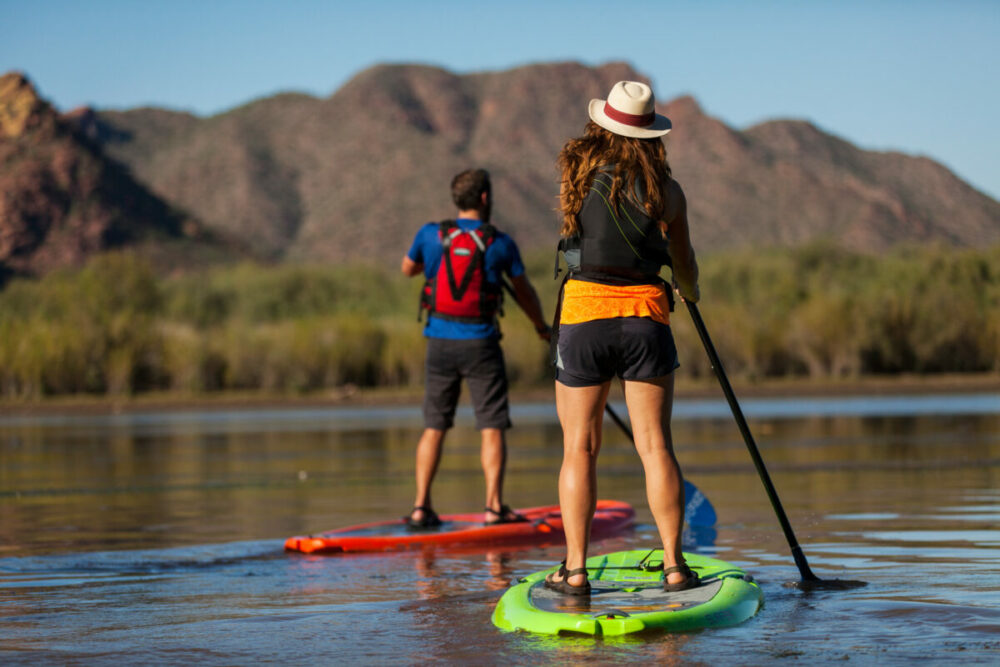 two people on stand up paddleboards on the Salt River in Arizona